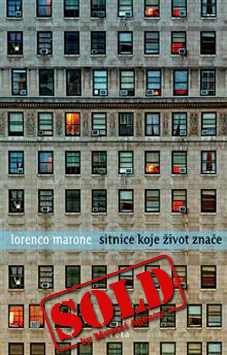 Cover of SITNICE KOJE žIVOT ZNAčE